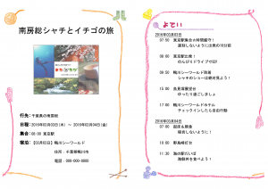 web4-matatabi5